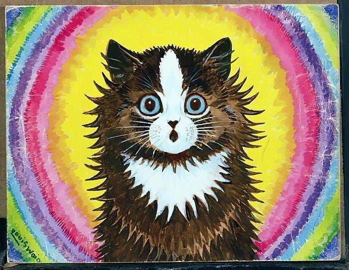 Gokkusagindaki Kedi